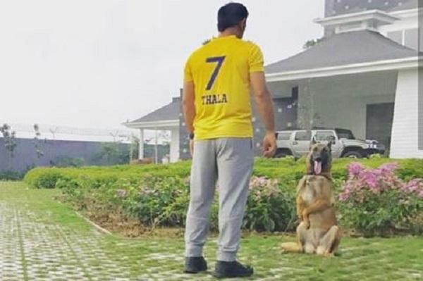 #CskReturns: Mahendra Singh Dhoni is Still the Super King!